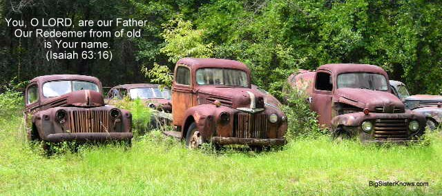 Old cars outside of Tallahassee, FL (Photo by Ashley Jones)