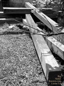 Crosses found behind a little church in Juliette, GA. (Photo by Ashley Jones)